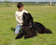 Girl and giant dog Stock Photo