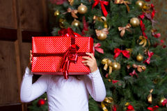 Girl with gifts Stock Photography