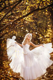 Girl in a wedding dress. Girl in a girl in a wedding dress in the autumn forest Stock Photography