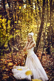 Girl in a wedding dress. Girl in a girl in a wedding dress in the autumn forest Royalty Free Stock Photos
