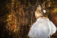 Girl in a wedding dress. Girl in a girl in a wedding dress in the autumn forest Royalty Free Stock Images