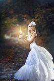 Girl in a wedding dress. Girl in a girl in a wedding dress in the autumn forest Stock Photos