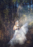 Girl in a wedding dress. Girl in a girl in a wedding dress in the autumn forest Stock Images