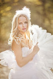 Girl in a wedding dress. Girl in a girl in a wedding dress in the autumn forest Stock Image