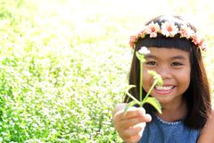 Girl give flowers toothy smile. Cute girl give flowers with toothy smile Stock Image