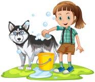 Girl giving bath to pet dog Royalty Free Stock Photos