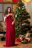 Girl with a glass of champagne on new year's tree Royalty Free Stock Images