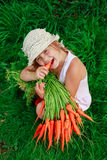 Girl gnaws carrot with a bunch of carrots Royalty Free Stock Images