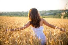 Girl goes through a field at sunset Stock Images