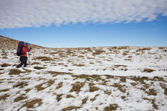 The girl goes through the snow in the mountains. Royalty Free Stock Photos
