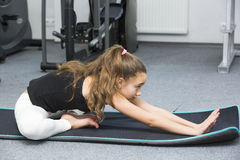 Girl goes in for sports. Girl is engaged in sports and gymnastics in the gym royalty free stock photography