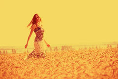 Girl in golden cornfield. Attractive girl walking in golden cornfield with sky background and copy space stock photo