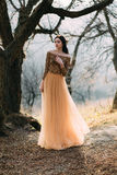 Girl in golden dress. Pretty brunette girl walks in the forest . She is dressed in luxurious, golden dress. The wind playing with her hair and fabrics. The royalty free stock photography