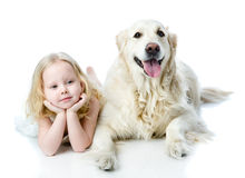 Girl and Golden Retriever. Looking at camera. isolated on white Royalty Free Stock Photography