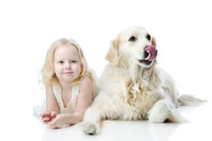 Girl and Golden Retriever. looking at camera. Isolated on white Stock Photos