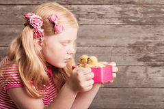 Girl with gosling on wooden background Royalty Free Stock Photography