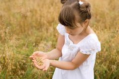 Girl with the grain Royalty Free Stock Photo