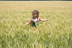 The girl on a grain field Royalty Free Stock Photography