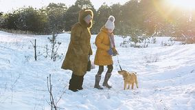 Girl and grandmother walking with a dog in a snowy winter park on a background of snow covered trees, sunny frosty day. stock footage
