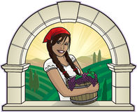 Girl with Grapes. Illustration of a country girl holding a basket of grapes in front of an arched window Stock Photos