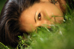 Girl in a grass Stock Images