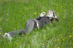 Girl on a grass. Girl lays on a grass and smells dandelion Royalty Free Stock Photos