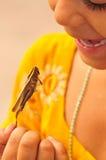 Girl with grasshopper Stock Photos
