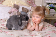 Girl with gray rabbit Stock Photos