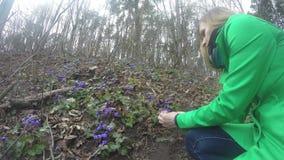 Girl in green coat pick violet flower blooms in spring. 4K stock footage