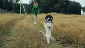 Girl in green dress with two Russian greyhounds. 1 stock footage