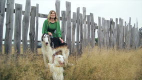 Girl in green dress with two Russian greyhounds. 1 stock video footage