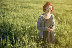 Girl and green field in the morning Royalty Free Stock Image
