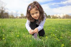 Girl in the green field Stock Images