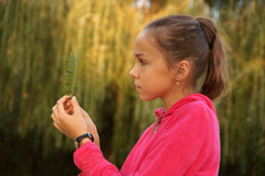 Girl on green leaves background Stock Photography
