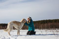 A girl in a green ski jacket on her knees and a Russian white hound in a snowy field in sunny winter royalty free stock images