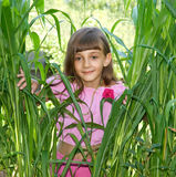 The girl in green thicket Royalty Free Stock Images