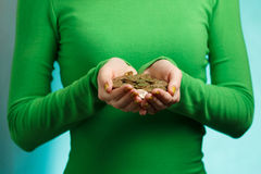 Girl in green turtleneck holding gold coins in hands Royalty Free Stock Image