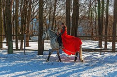 Girl on grey horse. Royalty Free Stock Images
