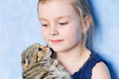 Girl with grey kitty Royalty Free Stock Photos
