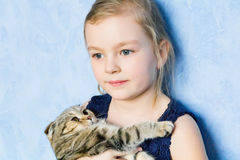 Girl with grey kitty Stock Photos