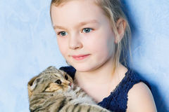 Girl with grey kitty Stock Images