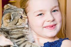 Girl with grey kitty Royalty Free Stock Photo