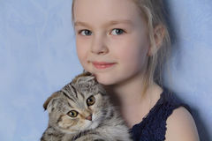 Girl with grey kitty Royalty Free Stock Image