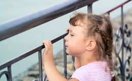 Girl grieves at the metal fence Royalty Free Stock Images