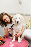 Girl grooming of her dog at home Stock Images