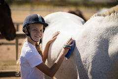 Girl grooming the horse in the ranch. Smiling girl grooming the horse in the ranch on a sunny day stock photos