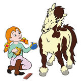 Girl grooming pony Royalty Free Stock Photo