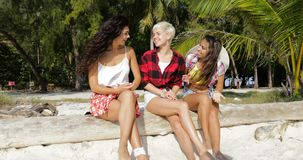 Girl Group Talking Sitting Outdoors Under Palm Trees, Happy Smiling Woman Friends Communication stock video footage