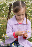 Girl guesses on chamomile. Girl guesses on a chamomile Royalty Free Stock Photo