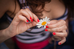 Girl guesses on a flower Stock Photos